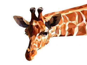 Bücür Zürafa Hikayesini ve Masalını Oku