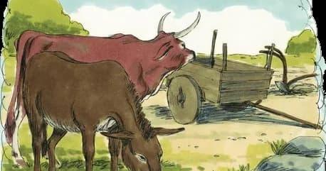 Eşek, Öküz ve Çiftçinin Öyküsü